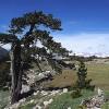 Parco Nazionale del Pollino, tra monti e borghi