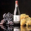 Il Vino DOC San Colombano