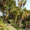 I Giardini incantati di Hanbury