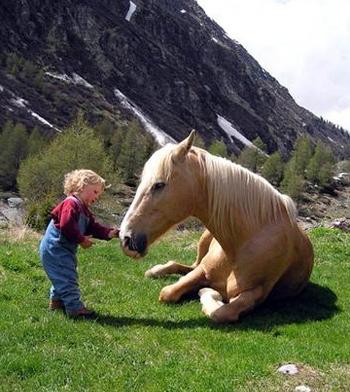 Risultati immagini per pony  e bambini