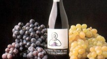 Il Vino DOC San Colombano